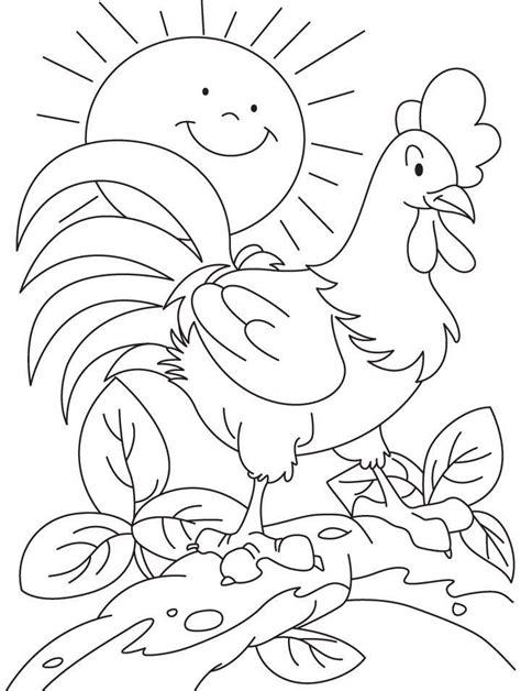 Mewarnai Gambar Ayam Jago Gambar Warna dan Buku mewarnai
