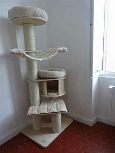 Arbre A Chaton : arbre chat pour maine coon ~ Premium-room.com Idées de Décoration