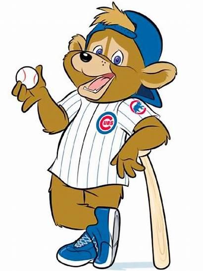 Chicago Cubs Clip Cub Clipart Bear Bears