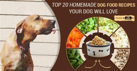 top  healthy homemade dog food recipes  dog