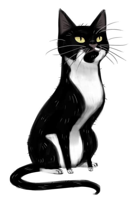 Daily Cat Drawings  Your Daily Cat Illustration Fix