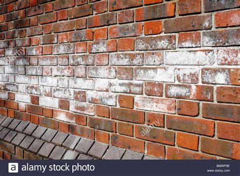 efflorescence salts  brick wall stock photo