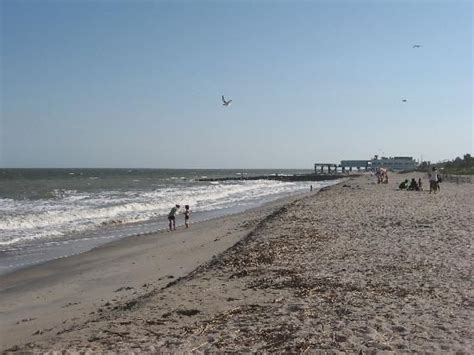 Charter Boat Services by Edisto State Park Sc Fishermen Can Choose From Pier
