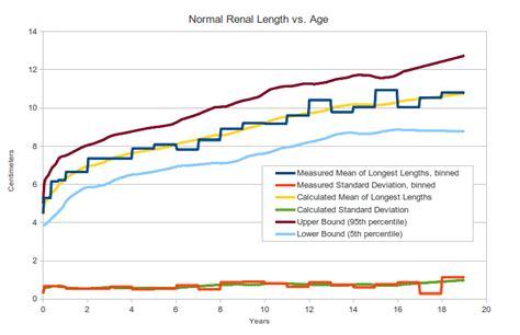 Newborn Diameter Diagram by Pediatric Kidney Size Normal Range And Renal Length