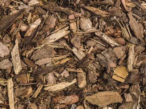 Garden Mulch Types