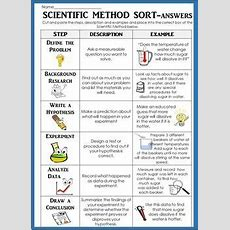 Scientific Method Sort Cut And Paste W Descriptions & Examples! Review! Assess  5th Grade
