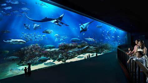 bureau aquarium sea aquarium 28 images s e a aquarium marc s