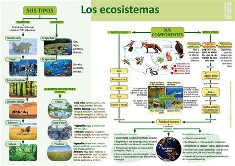 los ecosistemas invdes