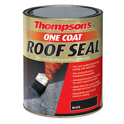 thompsons clear  coat water seal ultra