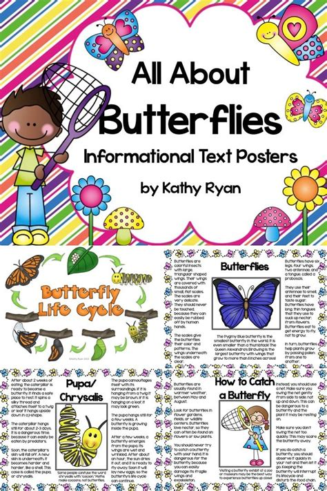 butterfly informational text posters  coloring book