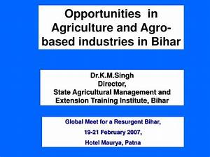 PPT - Opportunities in Agriculture and Agro-based ...
