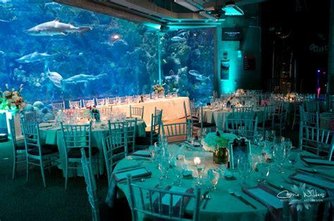 Unique Wedding Ideas: Aquarium Venues, Photos, Invitations