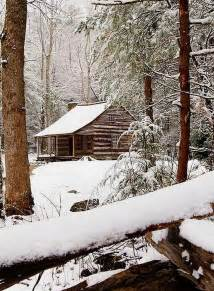Winter Cabin in Snowy Woods
