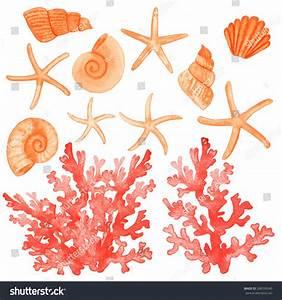 Set Different Sea Shellscorals Starfish Watercolor Stock ...