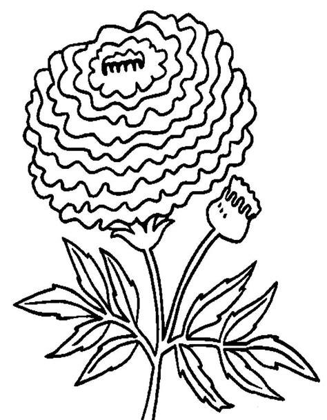 fiori disegni disegni di fiori da colorare foto 28 40 nanopress donna