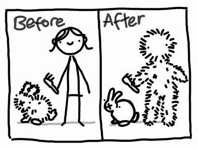 Shedding Season During Brushing