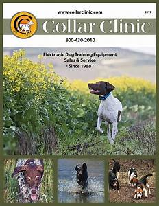 42 best dog training aids for hunting dogs images on With dog training aids