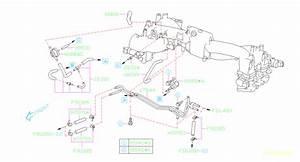 42084fe010 - Valve-purge  Manifold  Intake  Pipe