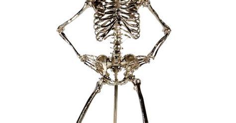 zia priven skeleton l zia priven los angeles california ziapriven com