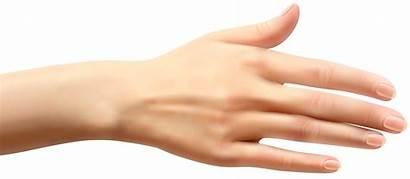 Hand Hands Clipart Clip Female Wrist Reaching