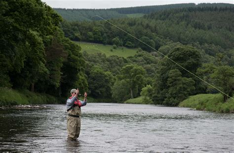 trout fishing river tweed orvis endorsed guides