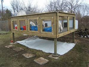 above ground dog kennels google search hangin tree With in ground dog house