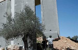 Israel starts building new part of controversial West Bank ...