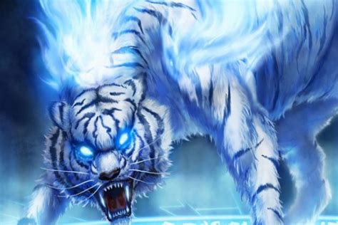 Fire Tiger Wallpapers Hd