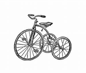 Tricycle Pictures - Cliparts.co