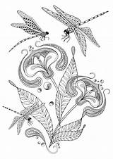 Dragonfly Coloring Pages Adult Adults Printable Colouring Flower Butterflies Etsy Dragonflies Sheets Illustration Para Butterfly Zentangle Drawings Flowers Instant Digital sketch template