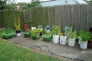 small vegetable garden plans to consider green leaf tips
