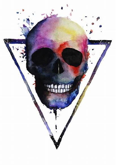 Skull Colorful Skeleton Illustration Painting Watercolor Artmarketjapan