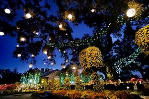 The Grotto Lights Bellingrath Gardens And Home Encyclopedia Of Alabama