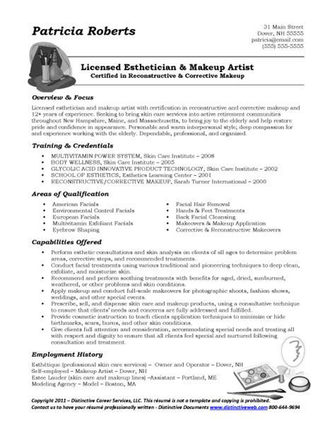 Effective Resume Writing Sles by Sle Functional Resume