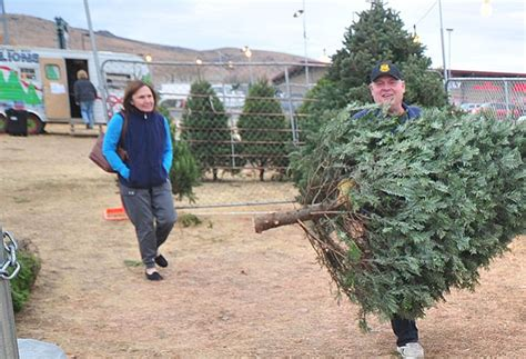 christmas tree lot near me fresh cut tree tips and tricks the daily courier prescott az