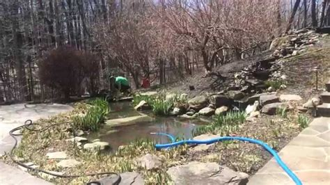 Clean Backyard Pond by Backyard Pond Maintenance Koi Pond Cleaning Service