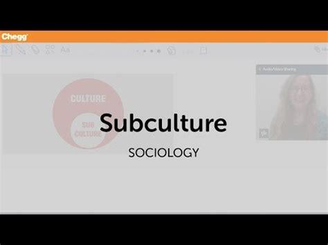 definition  subculture cheggcom