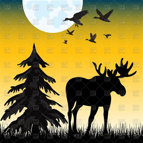 Silhouette Of Moose On Glade In Night Vector Image