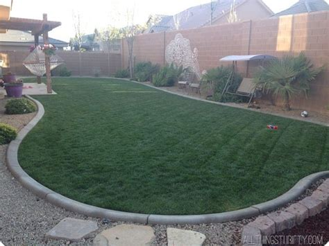 How To Get A Green Spring Lawn Fast