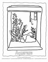 Coloring Aquarium Pet Seahorse Tank Clipart Turtle Fish Cat Animal Fishes Whith Seahorses Preschool Pets Drawing Cliparts Animals Clip Popular sketch template