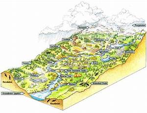 Amrclearinghouse Org    Watershed Basics