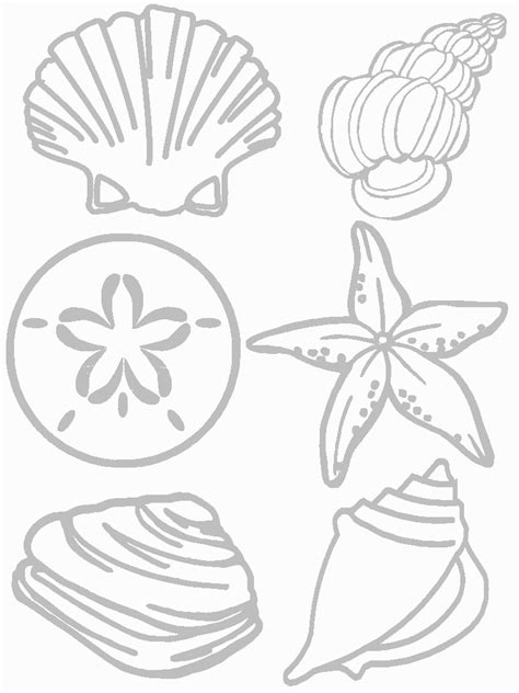 Coloring Templates For by Shells Coloring Pages And Print For Free
