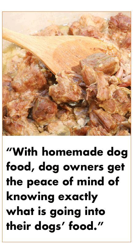 worst homemade dog food recipes springtime