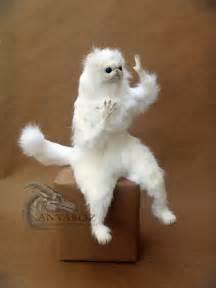 white cat meme anyaboz this cat room guardian