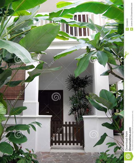 tropical house  lush garden stock image image  designs accommodations