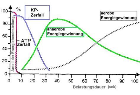 Aerober energiestoffwechsel