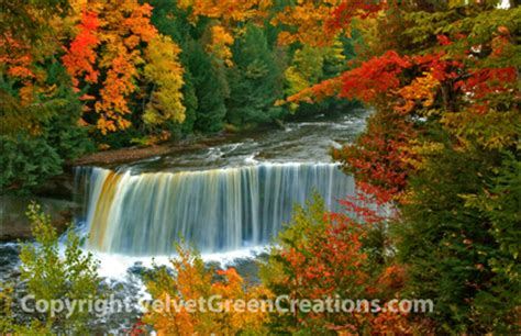 newberry mi fall color