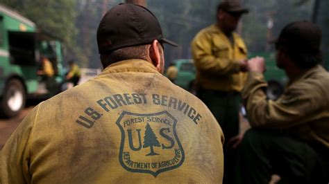 sexual harassment problems  forest service chief