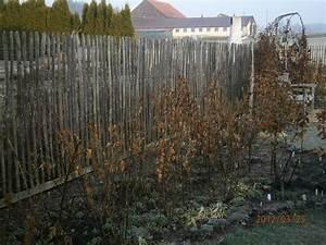 Stalltür Selber Bauen : 78 ideas about sch ner garten on pinterest schattengarten hosta pflanzen and hosta g rten ~ Watch28wear.com Haus und Dekorationen