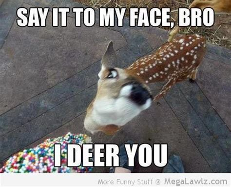 Say That To My Face Meme - funny say it to my face bro pictures lol megalawlz com